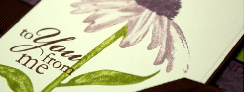 inspired-bag-tech-olive-plum-line.jpg