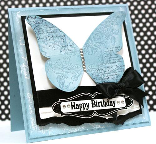 teneale-williams-case-study-basic-baja-butterfly.jpg